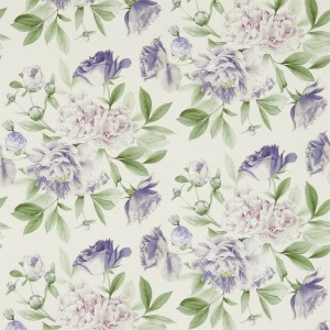 Zoffany - Woodville Papers - Phoebe 311360